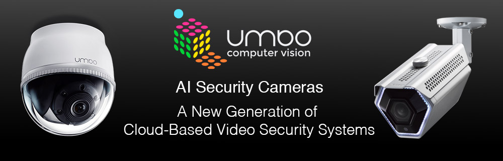 3.AI Security Cameras